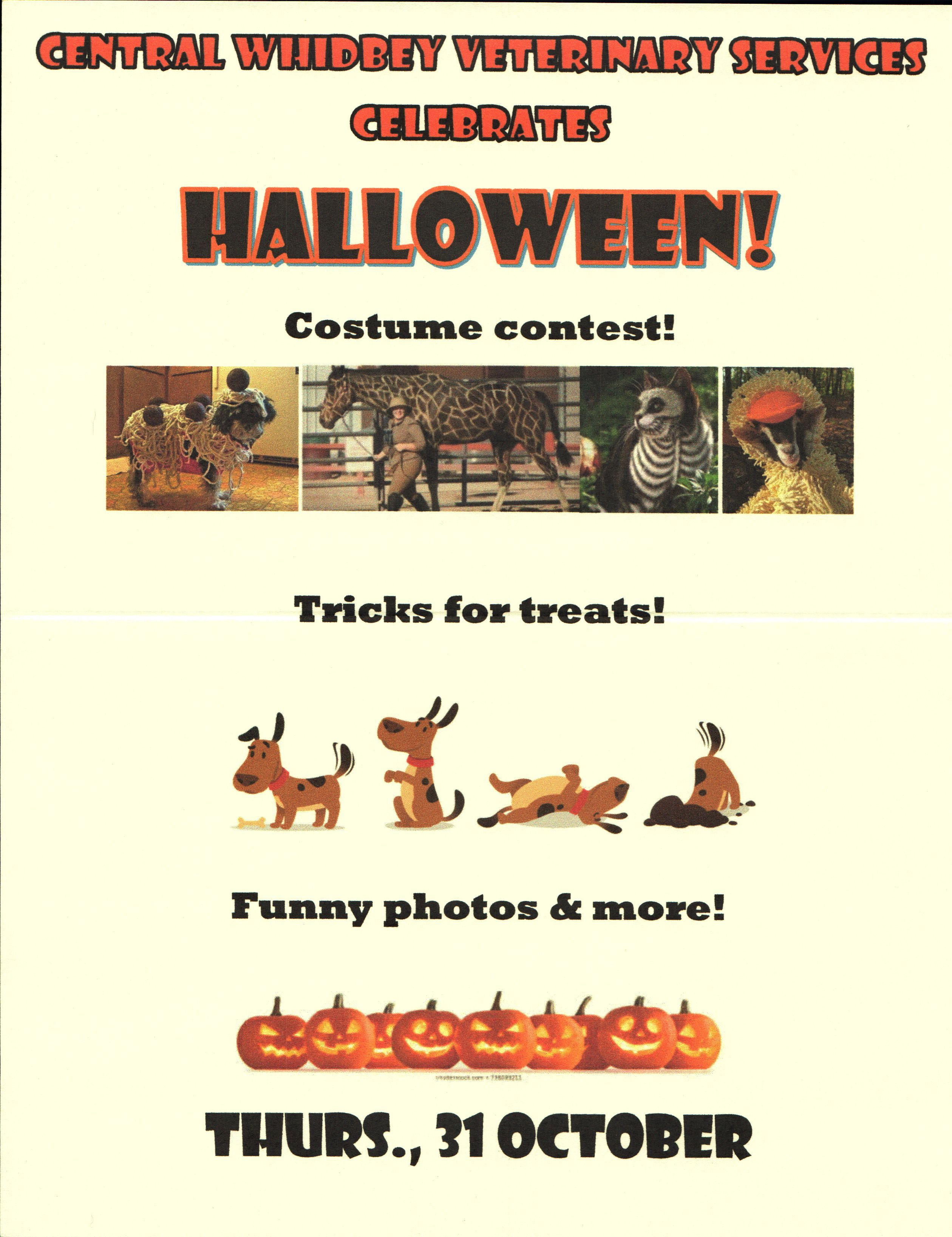 Halloween Flyer Created Sep 26 2019 Central Whidbey